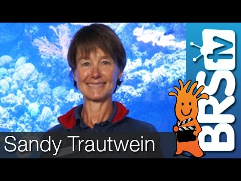 Culturing Inverts for Species Recovery & Habitat Restoration by Dr. Sandy Trautwein | MACNA 2016